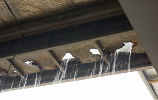 What-Causes-Roof-Rot